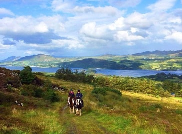 Ashtree Stables in Donegal